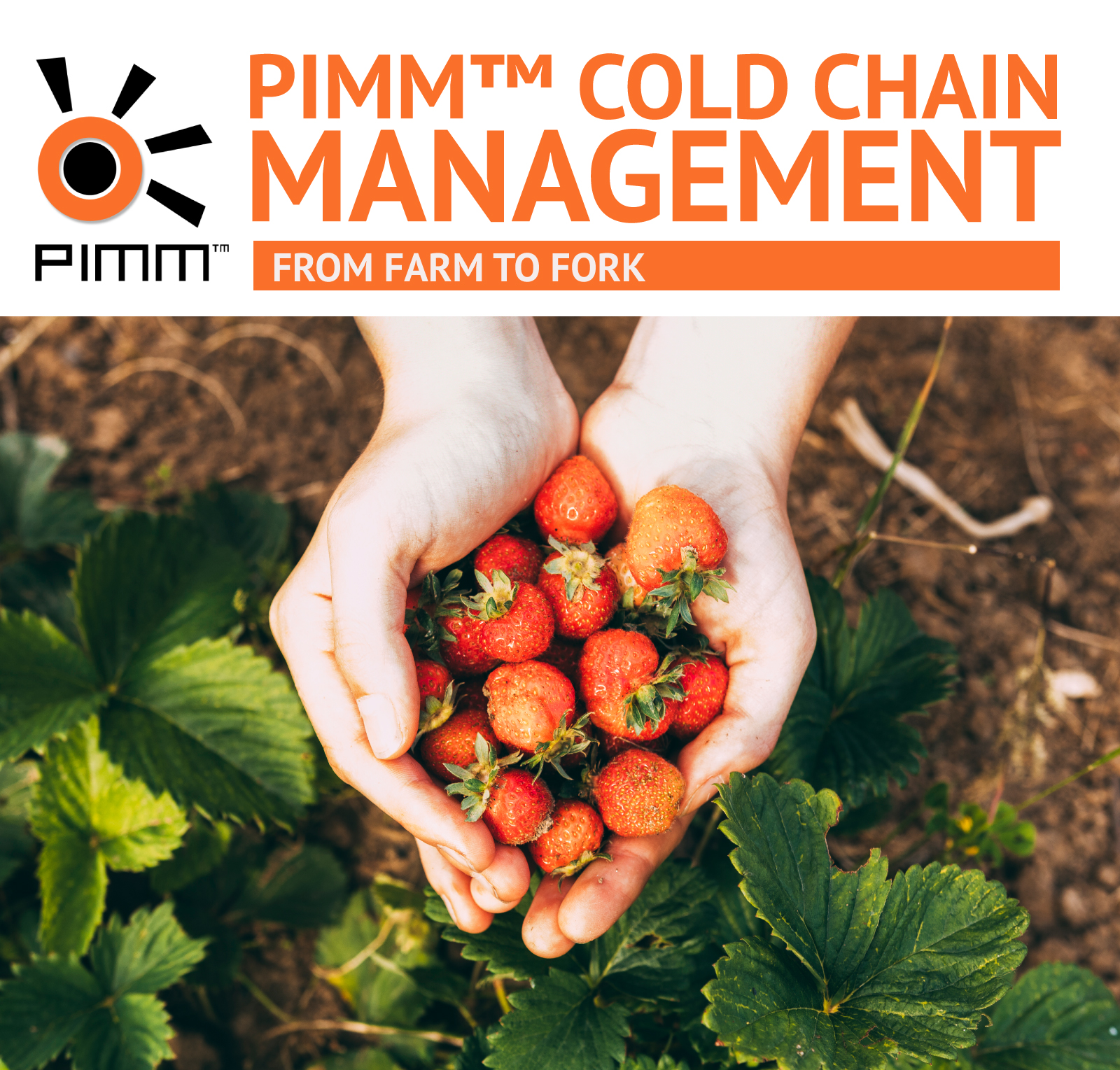 PIMM™ Cold Chain Management